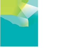 Logo NPI